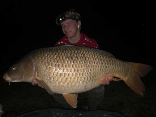 110 IMG_17,5 kg
