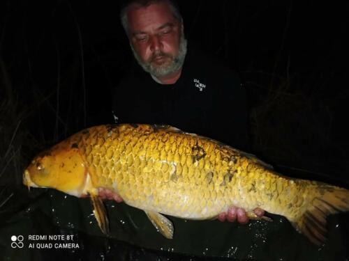 190 Šeb. ryb koi 9,2kg